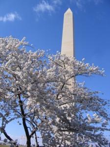 cherry-monument